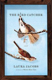birdcatcher.jpg